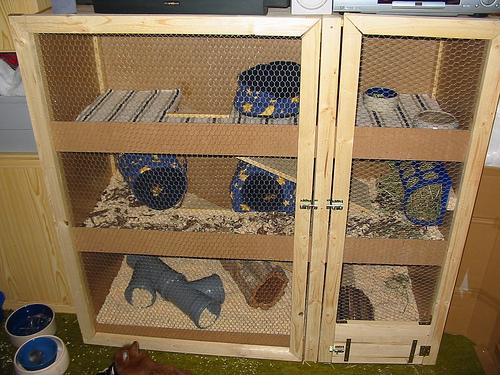 haltung der meerschweinchen kafig und einrichtung tierfreund. Black Bedroom Furniture Sets. Home Design Ideas