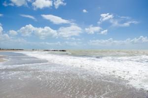 An der Küste der Toskana vielen sich viele Strände, hier bei Cecina, an denen auch Hunde erlaubt sind