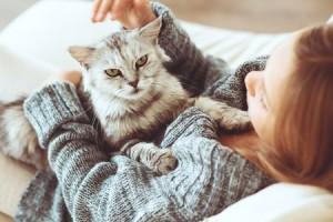 Was tun bei einer vermuteten Katzenallergie?