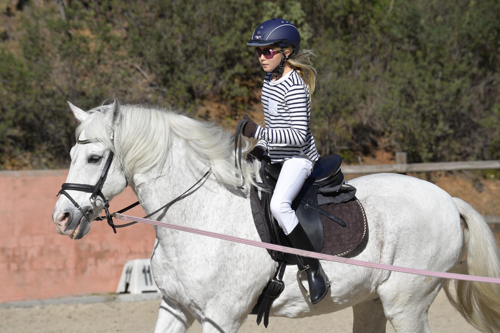 Reiten ist für viele der schönste Sport der Welt. Der Wunsch ein eigenes Pferd zu haben, ist vor allem bei den jungen Reitern weit verbreitet. Eine Reitbeteiligung kann eine finanzierbare Alternative sein.